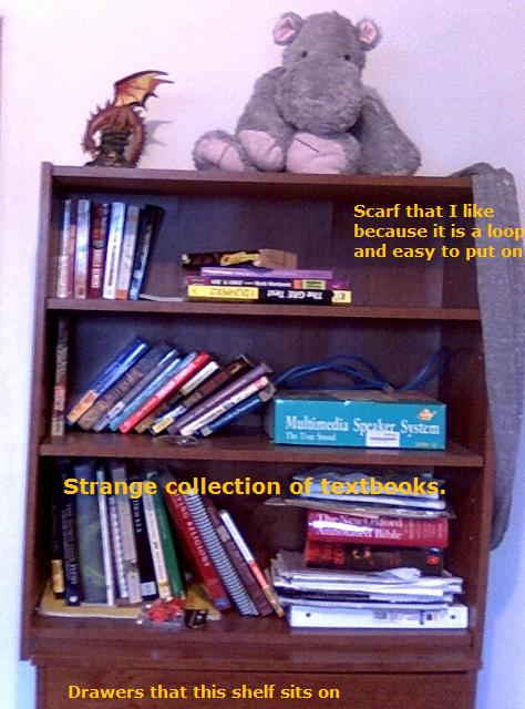 Another bookshelf