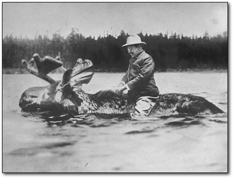 Roosevelt on a moose