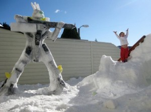 Snow bot serve and protect